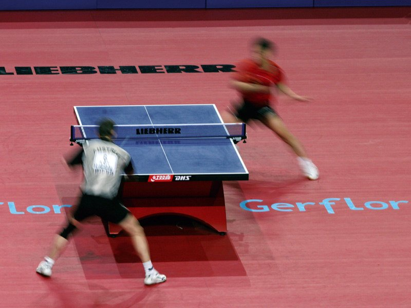 Resilient sports flooring for table tennis TARAFLEX™ TABLE TENNIS by gerflor