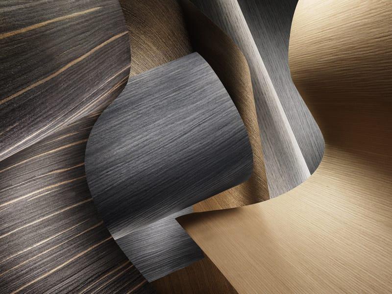 Trunk, slice, special format of raw wood ALPILIGNUM by ALPI