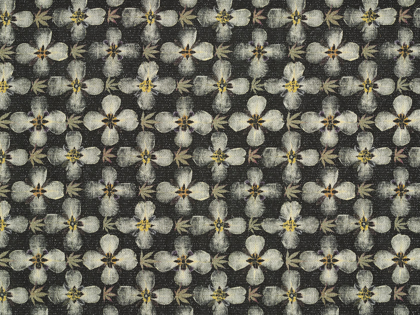 Wool rug with floral pattern HERBARIUM by Kasthall