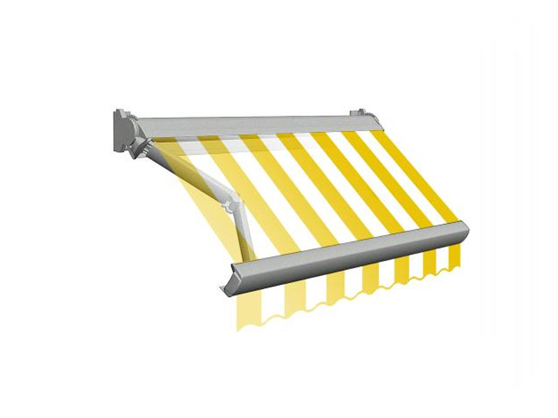 Box Folding arm awning T87CT by BT Group