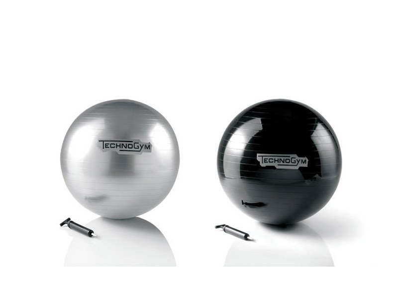Fitness accessory WELLNESS BALL by Technogym