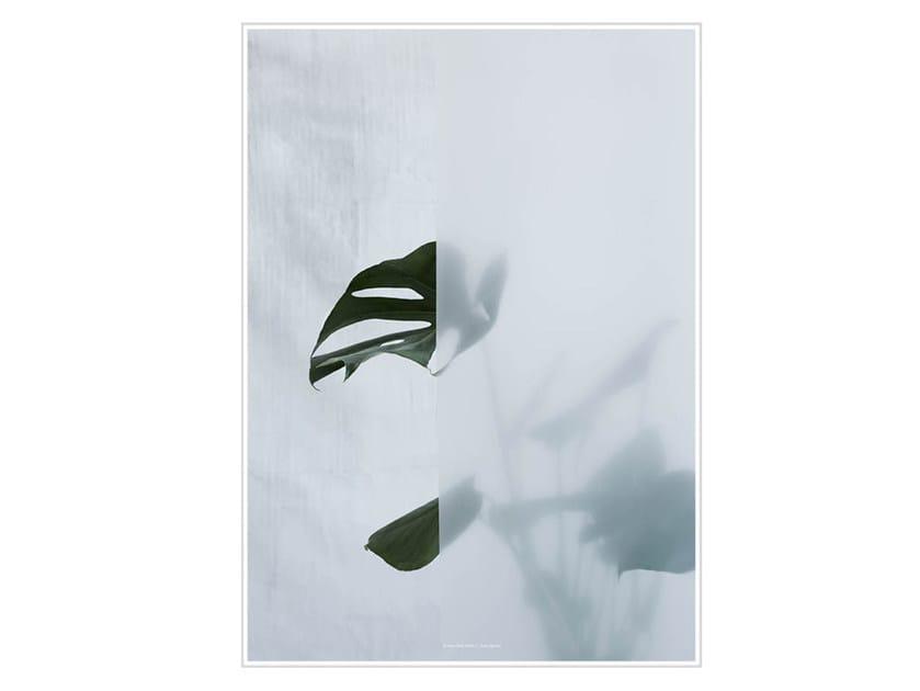Stampa fotografica SPLIT-LEAF PHILODENDRON I by Kristina Dam Studio