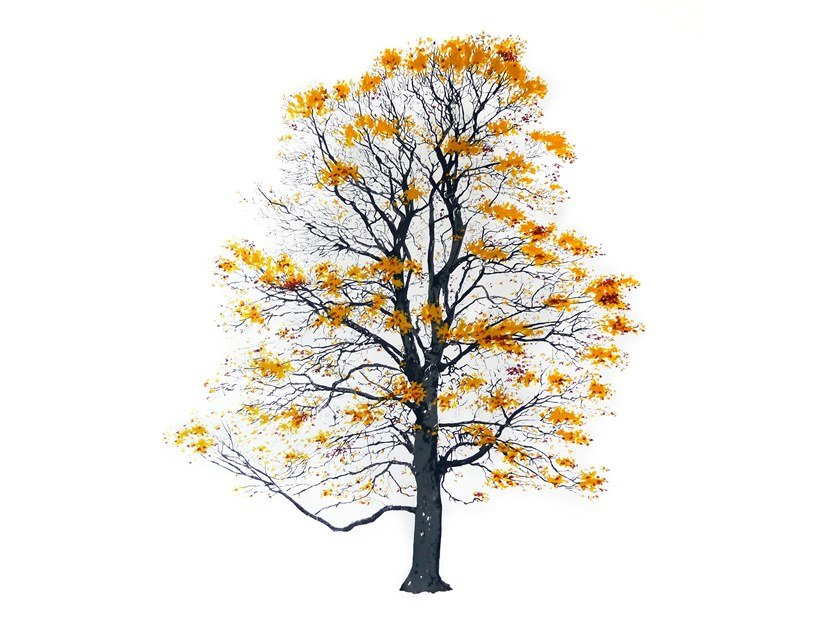 Decorative painting TREE AUTUMN by Magis