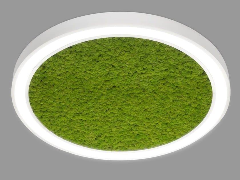 Plafoniera a LED in alluminio VECTOR ROUND MOSS by Metalmek