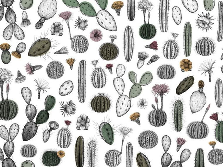 Motif wallpaper CACTOFILIA by Wallpepper