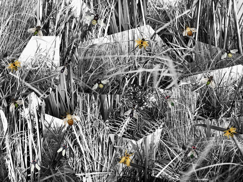 Paper wallpaper GRASS by Wallpepper