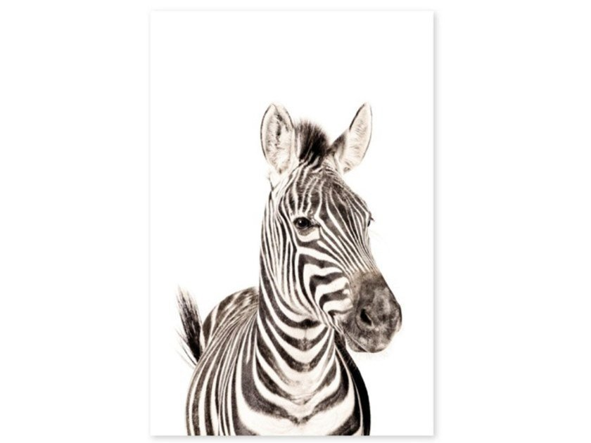 Decorazione adesiva in vinile ZEBRA by Groovy Magnets