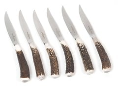 Set coltelli da bistecca in acciaio inoxACGKNCN980AS | Coltello - OFFICINE GULLO
