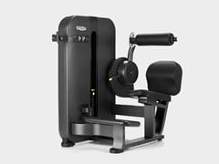 Multigym ARTIS® - LOWER BACK - TECHNOGYM