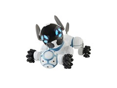 RadioCHIP cane Robot - ICOS