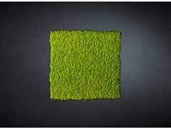 Quadro vegetaleLICHENE - VGNEWTREND