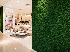 Parete vegetale in muschio MOOSGREEN FLEXIBLE MOSS - FREUND