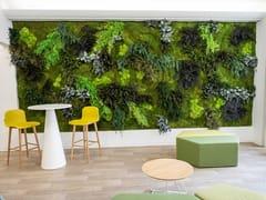 Parete vegetale in muschio e piante stabilizzateMOSS&PLANTS MID - GREENAREA