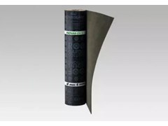 Membrana APP (-10°C) anti-radice con armatura TNTNOVAR-CH/S - SOPREMA GROUP
