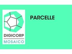 DIGI CORP, PARCELLE Parcella professionale e tariffa