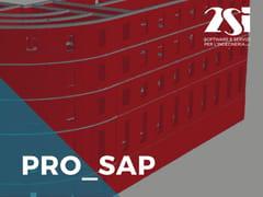 2SI, PRO_SAP LT Modulo 07 Verifica muratura e legno