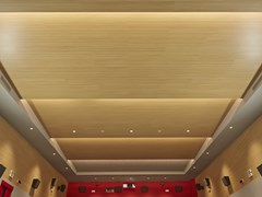 SOFT SOUND, SOFT TOP | Pannelli per controsoffitto  Pannelli per controsoffitto