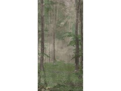 Lastra in gres porcellanatoWOODS B - WIDE & STYLE BY ABK