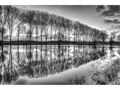 Stampa fotografica BANKS OF THE PONDS OF CATTENOM - ARTPHOTOLIMITED
