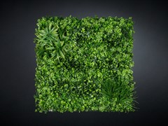 Quadro vegetaleECUADOR - VGNEWTREND