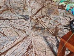 Pavimento/rivestimento in pietra naturale per interniFOREST BROWN POLISHED MARBLE | Pavimento/rivestimento per interni - STONE AGE PVT. LTD.