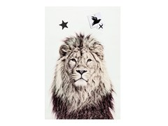 Poster magnetico LION - Animal