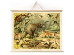 Poster magnetico FREAKY FOREST - Animal
