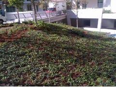 Giardino pensile intensivo con arbusti di piccola tagliaPERLIROOF con arbusti di piccola taglia - PERLITE ITALIANA