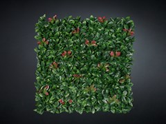 Quadro vegetalePHOTINIA - VGNEWTREND