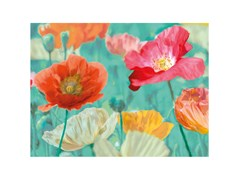 Stampa artistica in PET riciclatoPOPPIES IN BLOOM - MONDIART INTERNATIONAL