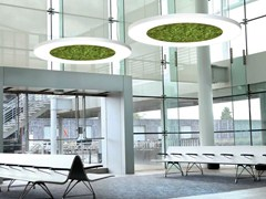 Lampada a sospensione a LED in muschio secco LUCE VERDE ANELLO | Lampada a sospensione - Luce Verde