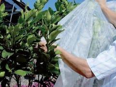 Velo per proteggere le colture ORTOCLIMA PLUS - Protezione dal freddo