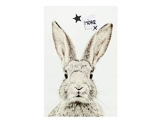Poster magnetico RABBIT - Animal