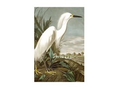 Stampa artistica in PET riciclatoSNOWY HERON - BIRD - MONDIART INTERNATIONAL