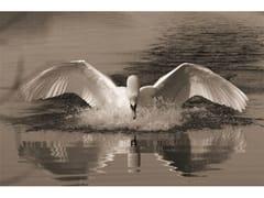 Stampa artistica in pannello di alluminioSWAN - MONDIART INTERNATIONAL