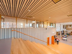 HunterDouglas Architectural, CONTROSOFFITTO LINEARE IMPIALLACCIATO Moduli lineari in legno impiallacciato per pareti e soffitti