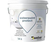 Idropittura traspirante idrorepellenteWEBERPAINT PROTECT - SAINT-GOBAIN ITALIA S.P.A. – WEBER