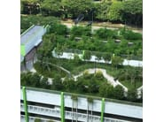 Roof garden system ALKORGREEN by RENOLIT