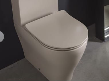 Plastic toilet seat with soft close APP