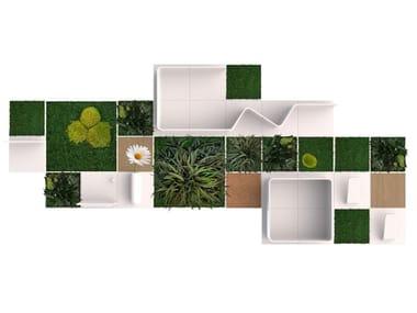 рамы с растениями