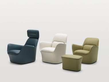 Armchair with armrests DS-110 | Armchair