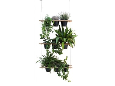 Plant suspension Etcetera