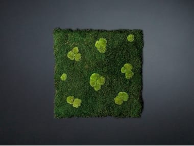 Vegetal frame FLATMOSS CON POLEMOSS