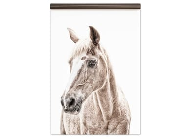Motif magnetic wallpaper HORSE | Magnetic wallpaper
