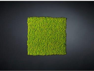 Vegetal frame LICHENE