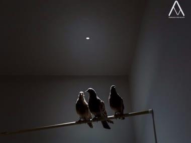 LED recessed spotlight NULLA