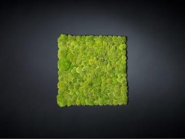 Vegetal frame POLEMOSS