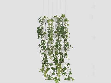 Porcelain vase system for hydroponic cultivation WINDOW GARDEN PENDANT