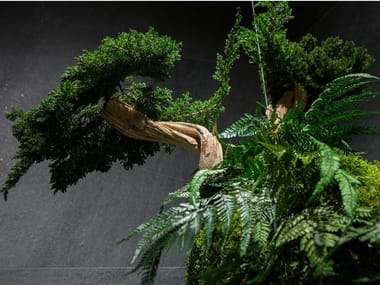 Stabilized plant AVATAR
