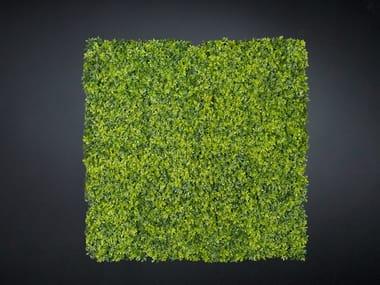 Vegetal frame BOSSO MIX